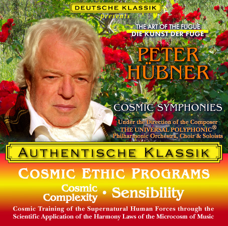 Peter Hübner - Cosmic Complexity